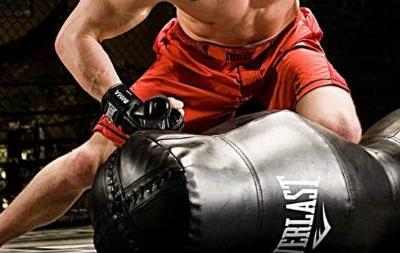 MMA e JIU JITSU